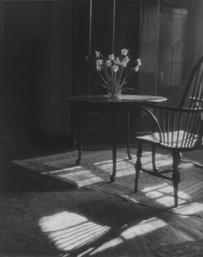 Interior at Westcroft - Daffodils on a table